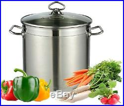 Large Deep Stainless Steel Cooking Stock Pot Casserole Glass Lid Induction Base